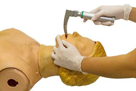 anesthetist: Hand and white medical gloves of doctor demonstration resuscitation CPR Technique by laryngoscope blade for insert endotracheal tube on model
