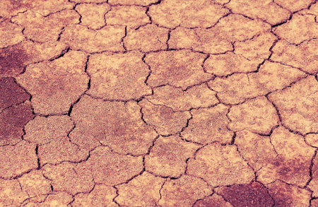 cracked earth: Cracked earth background