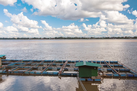 buoys: The bamboo coop for feeding fish in Mekong river on blue sky and big cloud