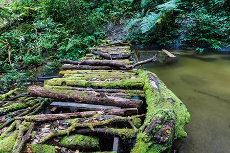 wooden bridge: old wooden bridge in river
