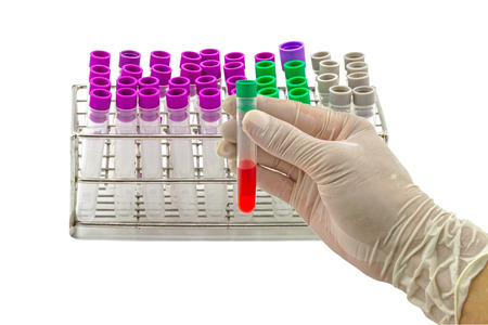 Medical Blood tube, test tube for laboratory empty on  rack on a while background