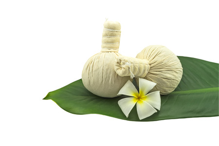 Spa herbal compressing ball and white frangipani flowers (Plumeria spp flower , Apocynaceae flower, Pagoda tree flower, Temple tree flower)  in green leaf isolate on white background
