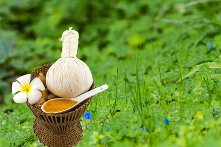 Spa herbal compressing ball , white frangipani flowers (Plumeria spp , Apocynaceae, Pagoda tree, Temple tree) , turmeric powder in white spoon in bamboo basket on moss waterfall on green grass. Stock Photo