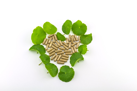 longevity drugs: Heart shape of green Asiatic Pennywort (Centella asiatica , Hydrocotyle umbellata L or Water pennywort ) and colorful pill on white background Stock Photo