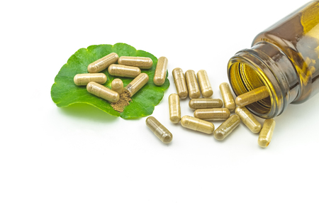 longevity drugs: Green Asiatic Pennywort (Centella asiatica ) , yellow pill capsules and bottle tablets on white background