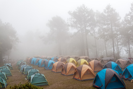Dome tent camping in sea of mist at Doi Pha Hom Pok National Park,Thailand. Editorial