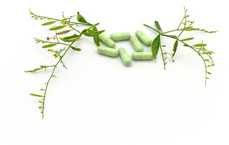 Colorful drug pill and fresh of Andrographis paniculata plant isolated on white background