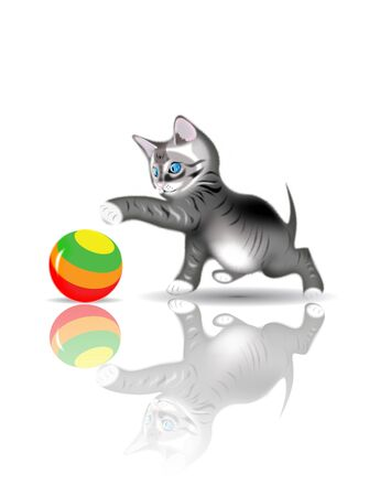 Kitten playing with ball Stock Photo - 9317062