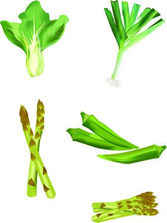 green vegetables delicious design set
