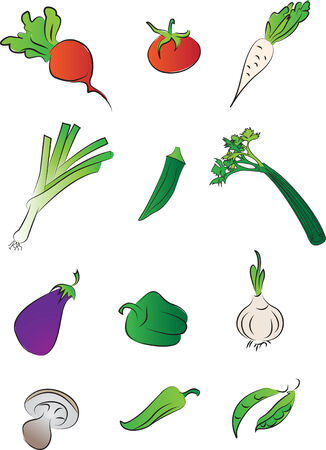 Fresh vegetables of food set collection Vector