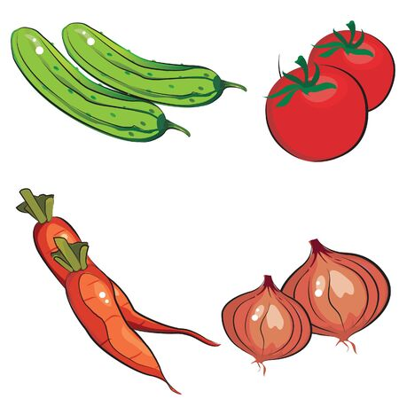 vegetable fat: vegetable salad fresh vector
