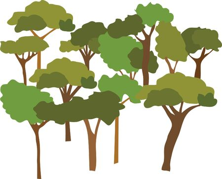 tree plant jungle vector Illustration