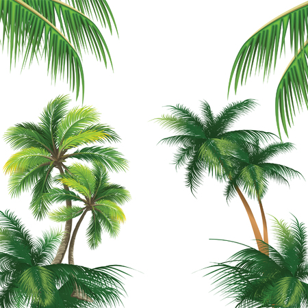 pattern with coconut palm tree vector Çizim