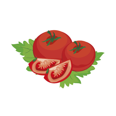 tomato vegetable fresh