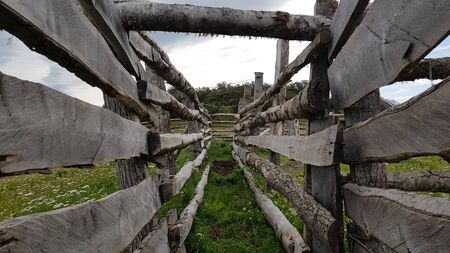 Ushuaia log yard Stock fotó