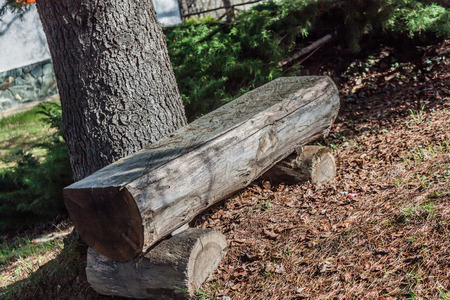 positioned: bench artisan of wood positioned in front of a tree Stock Photo