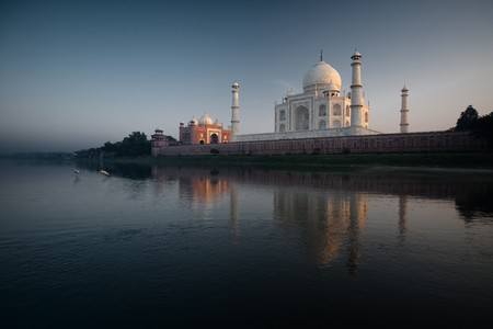 Yellow billed stork walk in the Jamuna River next to the Taj Mahal and its sunset reflection