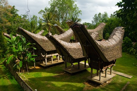 sulawesi: A cluster of tongkonan, traditional boat houses of the people of Tana Toraja in Sulawesi, Indonesia. Stock Photo