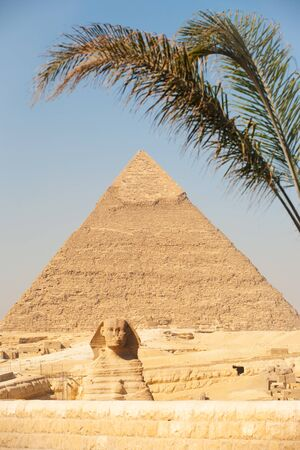 A palm tree frames the classic image of the Great Sphinx and Pyramid of Khafre seen from the entrance of the Giza Pyramids necropolis in Cairo, Egypt photo