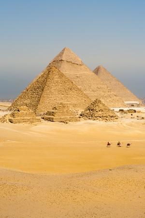 카이로, 이집트에있는 모든 기자 피라미드 앞에 낙타 행이 관광객을 운송합니다. 스톡 콘텐츠