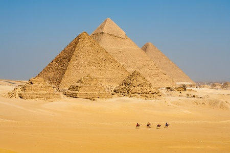 egyptian pyramids: A line of camels walks among the all pyramids of Giza in a row