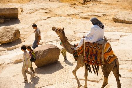 nags: El CAIRO - el 26 de octubre: Una gu�a de camella persistente persigue y nags el 26 de octubre de 2010 de una familia desinteresada de turistas en el Cairo, Egipto