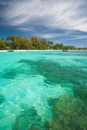 pristine corals: Under the crystal clear emerald turquoise blue waters are large coral formations as traditional Thai boats skim above the water on island paradise, Koh Lipe (aka Ko Lipeh), Thailand