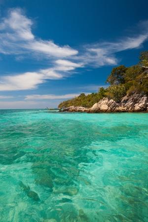 pristine coral reef: Coral debole in perfetto acqua cristallina di blu turchese incontra il bordo della giungla sul paradse isola di Koh Lipe (aka Ko Lipeh), Thailandia