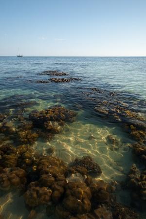Coral reef at low tide is seen through crystal clear ocean water in Koh Lipe (Ko Lipeh), Thailand.