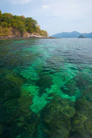 pristine corals: A coral reef perfect for snorkeling or diving under crystal clear green water in Tarutao national park, Thailand Stock Photo