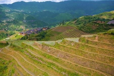seemingly: A beautiful landscape of a village amongst the seemingly infinite rice terraces at the Dragons Backbone (Longsheng Longji) in China
