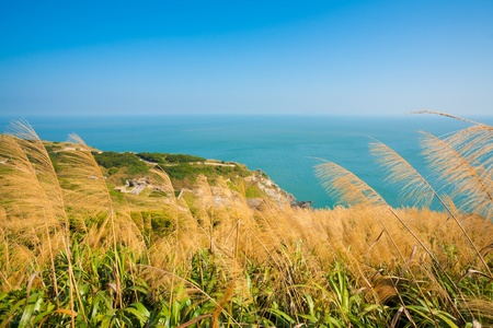 Tall grass and high cliffs on the edge of the sea form the natural landscape beauty of Juguang island in the Matsu archipelago of Taiwan.  Horizontal