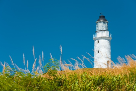 A picturesque scene of long grass in the foreground of the Dongju lighthouse on Juguang Island on the Matsu Islands in Taiwan Reklamní fotografie