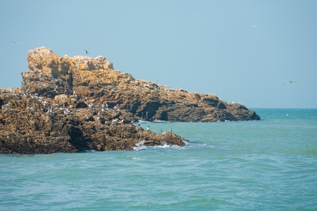 importantly: These rocky islets are home to migrating birds, most importantly the rare Chinese Crested Tern, a species once thought extinct which come exclusively here during mating season. Stock Photo