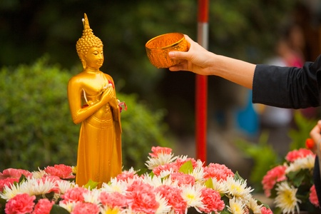 A Buddhist extending an arm to pour water over a Buddha statue, a traditional cleaning given during the Thai new year of Songkran Banque d'images