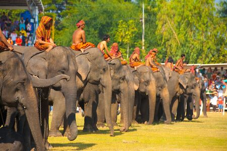 surin: SURIN, THAILAND - NOVEMBER 20, 2010: A row of elephants and their trainers wait on the performance field at the annual Surin Elephant Roundup on November 20, 2010 in Surin, Thailand Editorial