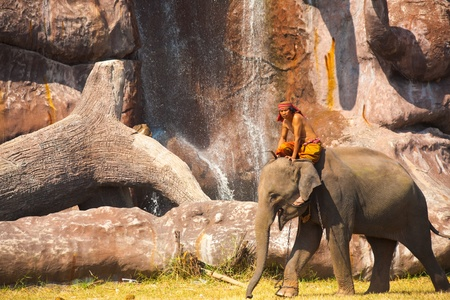 SURIN, THAILAND - NOVEMBER 20, 2010: An elephant walks in front of a manmade waterfall and cliff before the performance at the annual Surin Elephant Roundup on November 20, 2010 in Surin, Thailand
