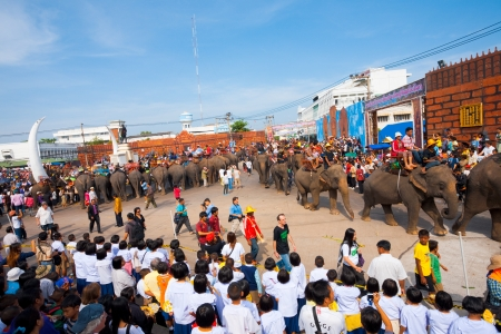 SURIN, ISAN, THAILAND - NOVEMBER 19, 2010: A special elephant breakfast is served at the end of the parade as spectators watch at the annual Surin Elephant Roundup on November 19, 2010 in Surin, Thailand