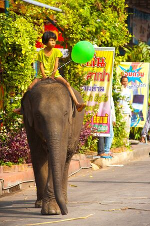 SURIN, ISAN, THAILAND - NOVEMBER 19, 2010: A young Thai girl rides the back of a baby elephant on a downtown street at the annual Surin Elephant Roundup parade on November 19, 2010 in Surin, Thailand