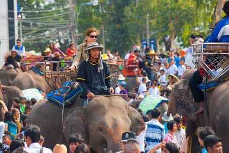 SURIN, ISAN, THAILAND - NOVEMBER 19, 2010: A female Thai passenger takes an elephant back ride in a large crowd at the annual Surin Elephant Roundup on November 19, 2010 in Surin, Thailand