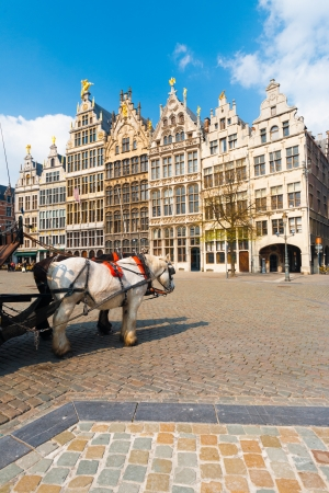A pair of horses add charm to the famous medieval Guild Houses of Antwerp, Belgium photo