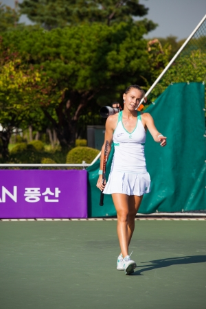 lull: SEOUL, KOREA - SEPTEMBER 23, 2009: Professional womens tennis player, Magdalena Rybarikova walks on the court during a lull in play at the Hansol Korea Open on September 23, 2009 in Seoul, Korea Editorial