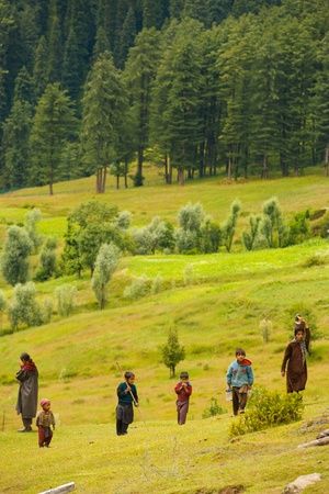 kashmir: PAHALGAM, INDIA - jULY 29, 2009:  Unidentified gypsy goatherders walk up a hill in Aru Valley in Kashmir on July 29, 2009 in Pahalgam, India. European gypsies have been traced to these Indian gypsies