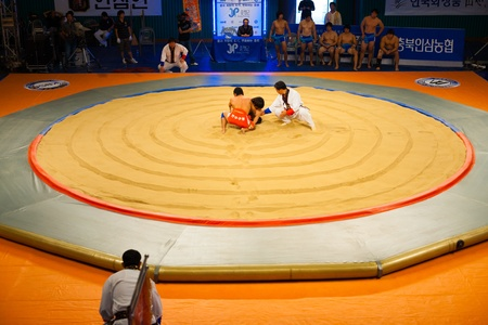 wrestlers: JEUNGPYEONG, KOREA - SEPTEMBER 18, 2009: Unidentified ssireum wrestlers, the Korean national sport similar to sumo, begin their bout in the middle of the ring on September 18, 2009 in Jeungpyeong, Korea