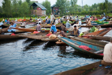 SRINAGAR, INDIA - JULY 11, 2009: Unidentified Kashmiri men buy and sell vegetables at the morning floating market on Dal Lake, major tourist attraction, in Kashmir on July 11, 2009 in Srinagar, India
