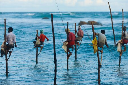 UNAWATUNA, SRI LANKA - MAY 22, 2008: Unidentified Sri Lankan stilt fishermen catch small fish in this unique traditional method sitting above the water on May 22, 2008 in Unawatuna, Sri Lanka