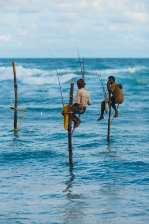 UNAWATUNA, SRI LANKA - MAY 22, 2008: An unidentified Sri Lankan stilt fishermen catches a small fish which dangles from the end of his pole on May 22, 2008 in Unawatuna, Sri Lanka Stock Photo - 16205531