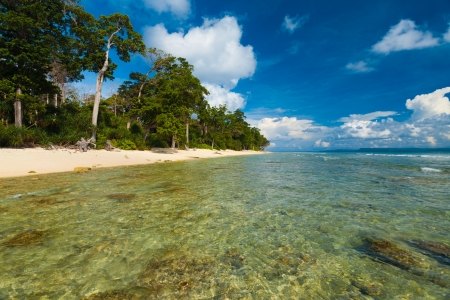 undeveloped: The calm and shallow crystal clear water laps against a stretch of pristine untouched beach and forest edge on Neil Island, a tourist destination, of the Andaman and Nicobar Islands of India