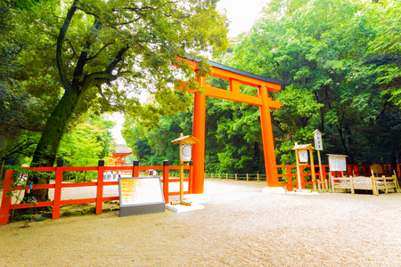 formally: Lush green forest surrounds the gravel footpath and large red torii gate entrance to Shimogamo Shrine formally named Kamo Mioya Jinja, one of the oldest shrines in Kyoto, Japan Stock Photo