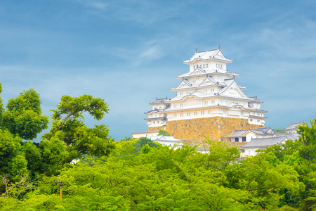 renovated: Beautiful daytime blue sky behind recently renovated Himeji-jo castle over the tops of trees seen from a distance in Himeji, Japan after 2015 renovations finished Stock Photo